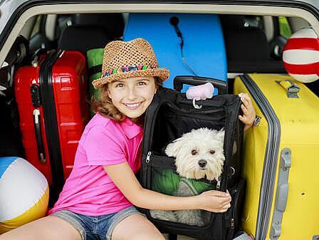 Ostsee Urlaub mit Hund – Kind mit treuem Vierbeiner   Hotel Osteeland