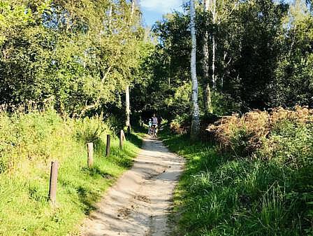 Thalasso-Kurweg 10 - Hohe Düne bis Markgrafenheide